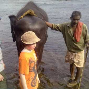 KIDS WITH ELEPHANT