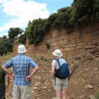 examining the ruins of Poseidon's temple