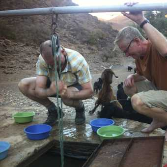 Showering with goats