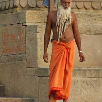 Morning Bathing - Vanarassi