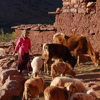 Berber household, Tighza Valley.jpeg