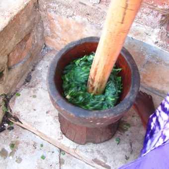 Cassava leaves being prepared