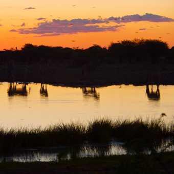 Waterhole at sunset - Etosha
