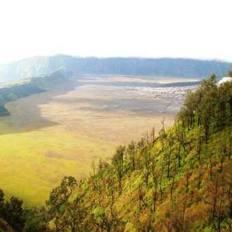 bromo landscap
