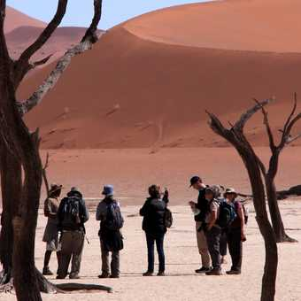 The group at Deadvlei