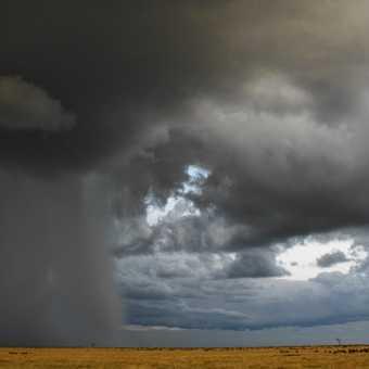 Approaching rain