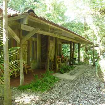 Thankfully, the only big snakes we saw were pickled - at Esquinas Rainforest Lodge