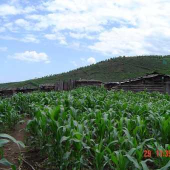 Farming inside Kili National Park