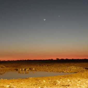 Etosha Waterhole at Night with Moon, Venus and Jupiter!