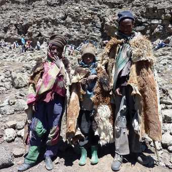 Shepherd kids