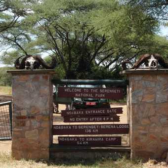 Serengeti .... entrance gate