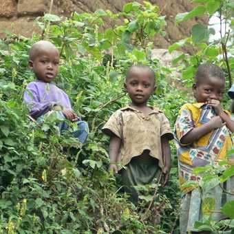 children at lake kivu