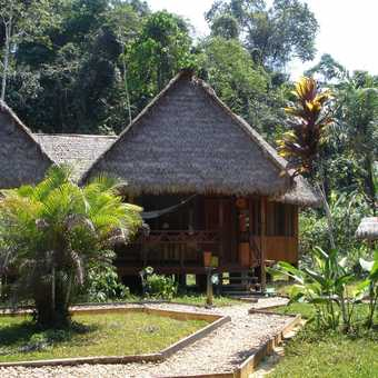 Our accommodation in the Amazon rainforest (actually it was hot sunshine every day)