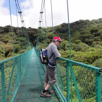 one of the many suspension bridges above the forest canopy great for bird watching and spotting the