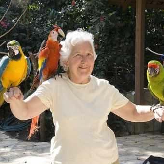 Macaw Mountain rehabilitation centre