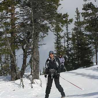 Drifting through the snow - one of Mary's photos