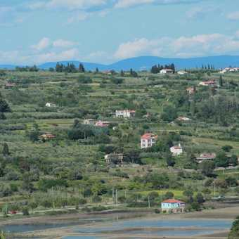 Salt beds of Strugnano