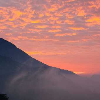 Dawn in Munnar
