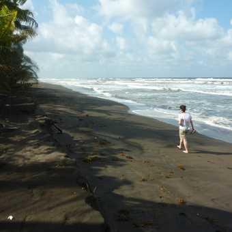 Stroll along the beach, Tortuguero