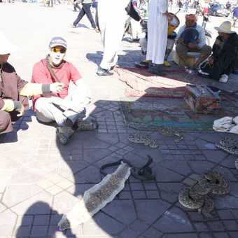 Hissing in the square: Jemaa El Fna