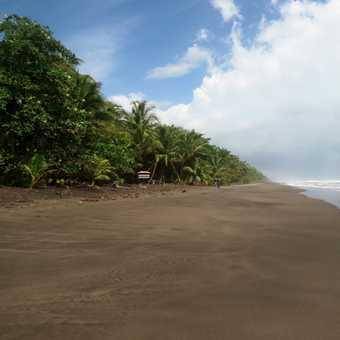 Caribbean Beach - Mawamba Lodge