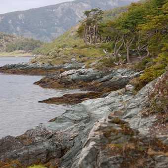 Tierra Del Fuego National Parl