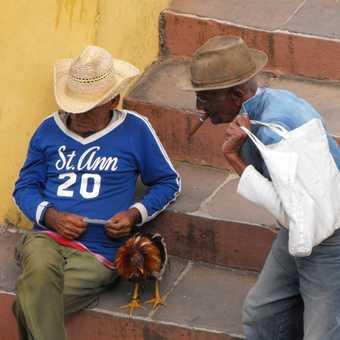 Conversation in Trinidad