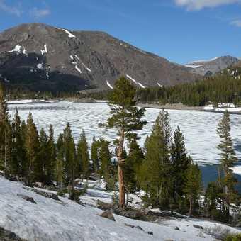 Frozen lake in June as we left Yosemite