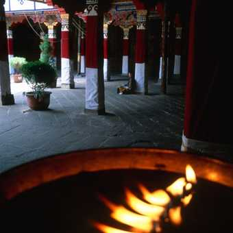 Yak butter lamps
