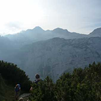 Back into forest again with a look at Triglav from near Blejska konta