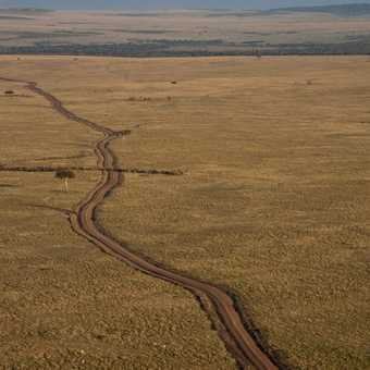 Masai Mara track