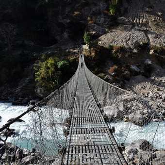 Lots of bridges to cross