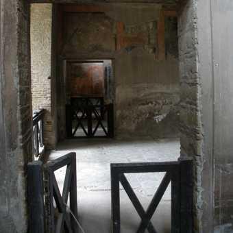 Survivor of Vesuvius
