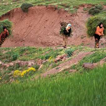 Berber women at work