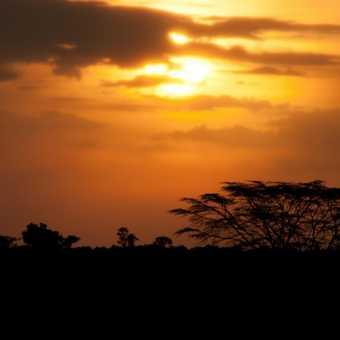 Sunset over Masai Mara