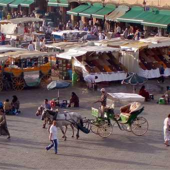 Caleche + Stalls, Marrakech