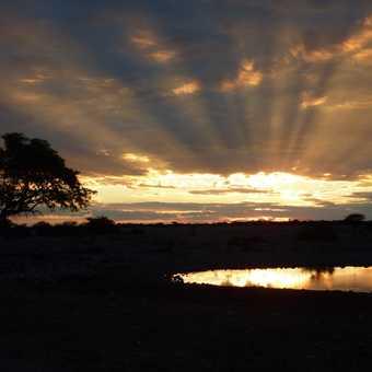 Sunset Etosha Waterhole