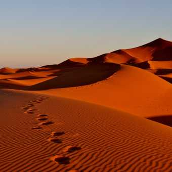 Merzouga - Sand dunes in the morning