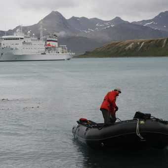 Zodiacs were are transport on to the island - the wonderful Vavilov is in the background
