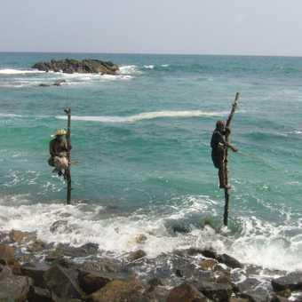 Pole fishermen