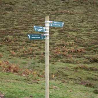 Last walk - where next?