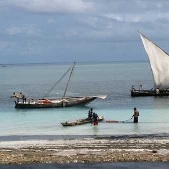 Tungwai fishermen with their dhows
