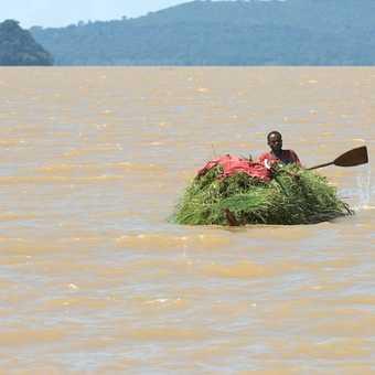 Papyrus boat Lake Tana