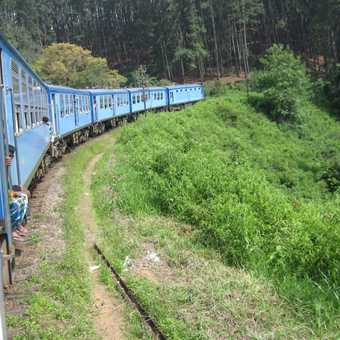 Train from Horton Plains down to Ella