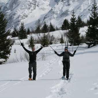 Snowshoe harmony