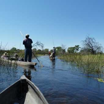 Travelling in the Delta