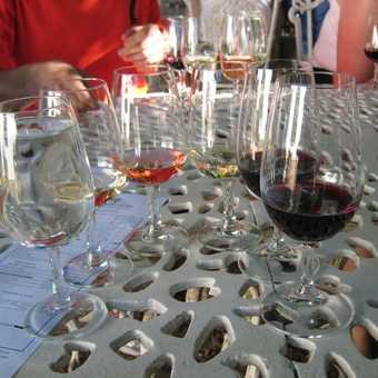 First wine tasting - glasses 1/2 empty or 1/2 full?