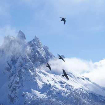 Ascent of Monte Piano