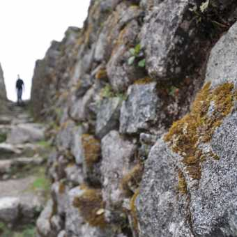 inca ruins.