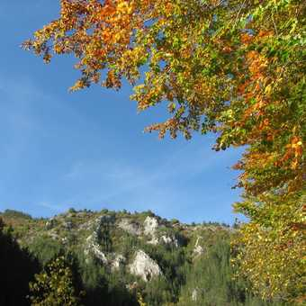Autumn in Buinovo Gorge_1